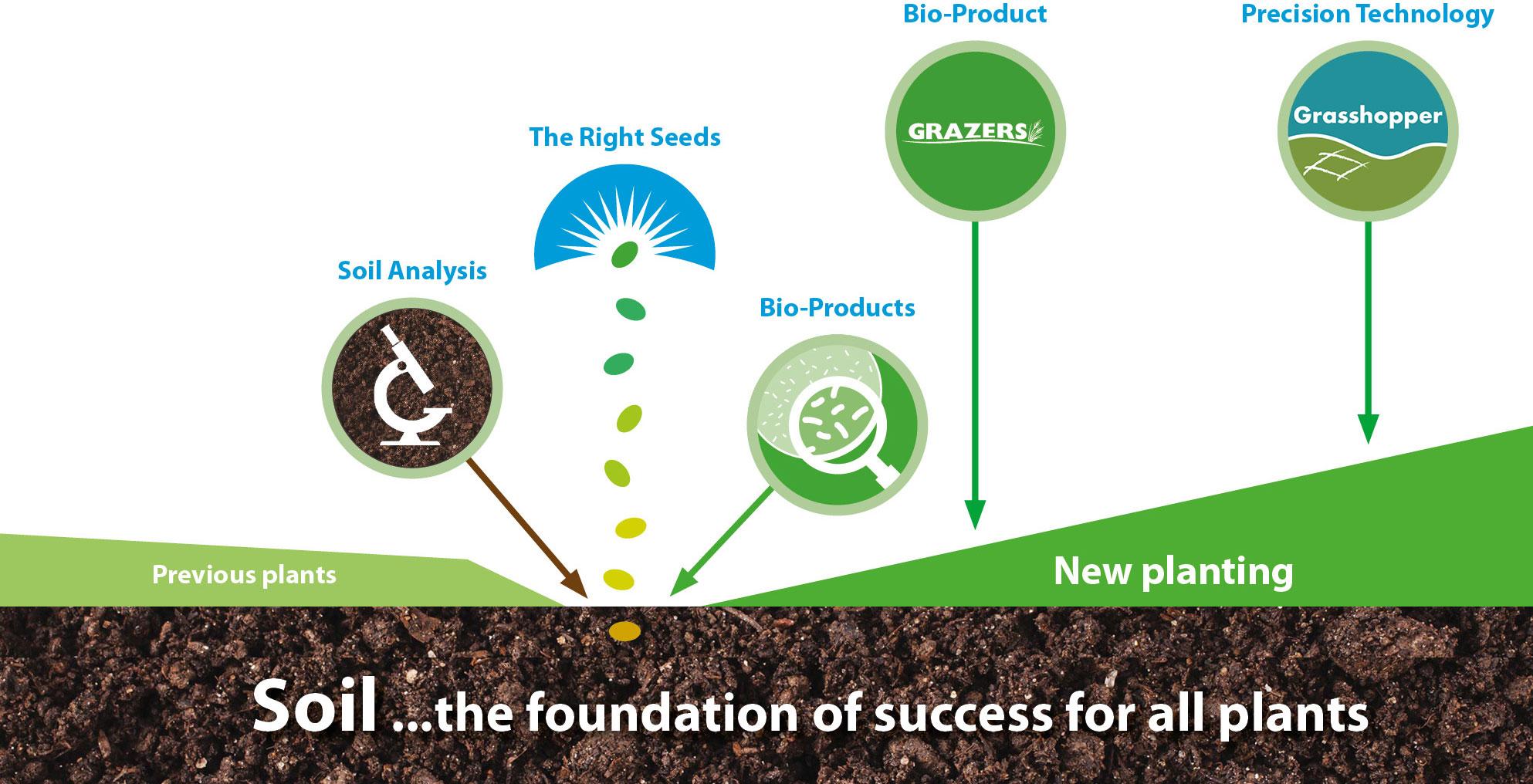 Planting Ideas Infographic