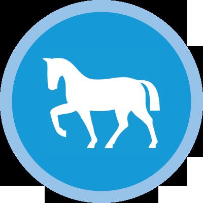 icon-horse