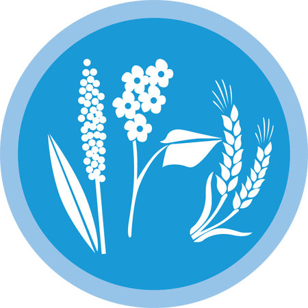 Wheat-icon-new