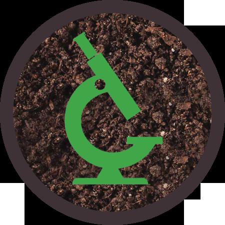 icons-MICRO-2GREEN