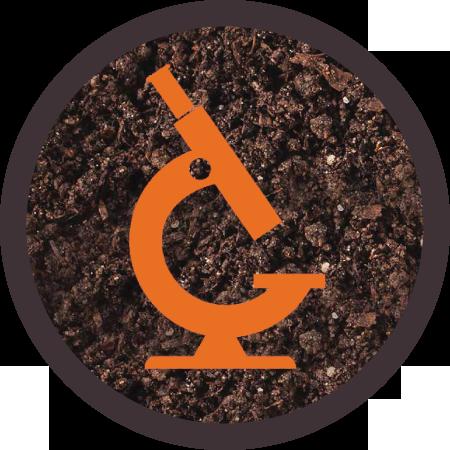 icons-orange