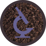 icons-purple