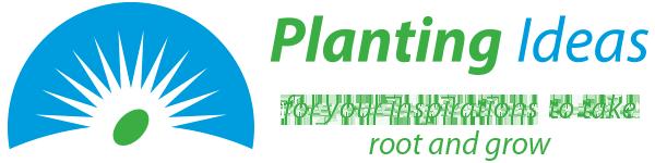 Planting Ideas
